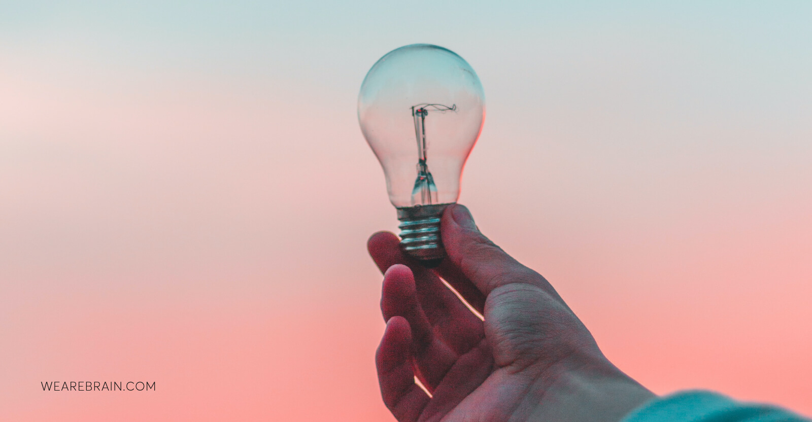 image of a hand holding a lightbulb